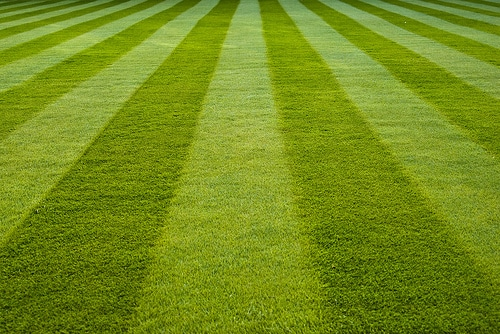 Lawn Care, Lawn Mowing, Mowing, Mowing patterns