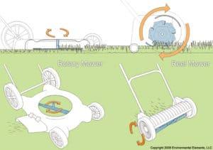 Zoysia Grass Lawn: Reel Mower vs Rotary Mower – Palmers Turf Farm